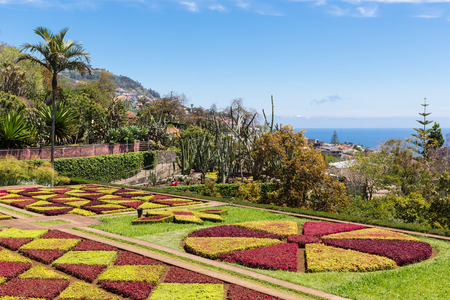 Botanical garden of Funchal at Madeira Island, Portugal