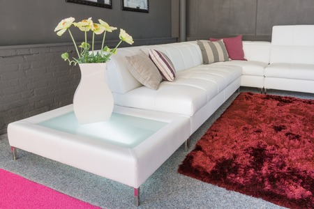 Couch with white upholstery and two pillows photo