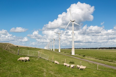 Dutch pasture with sheep and wind turbines with a beautiful late summer cloudsky photo