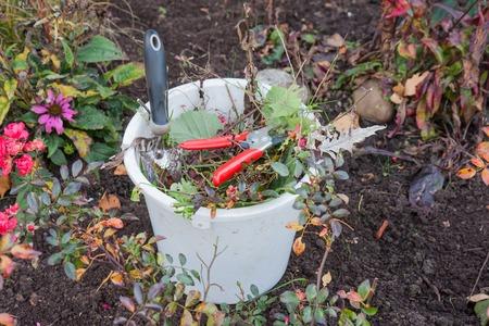 garden waste: Plastic bucket with garden tools and garden waste
