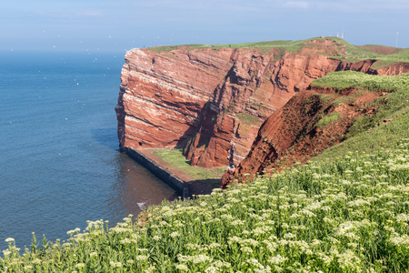 Red cliffs at German island Helgoland in the Northsea