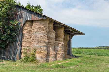 Rural landscape and open shed with pile of haystacks in Normandy, France