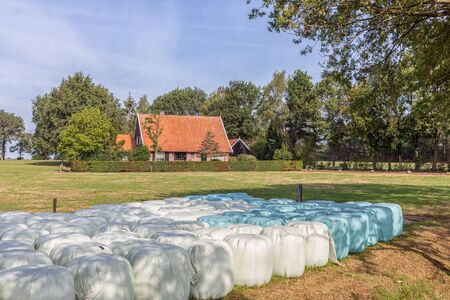 Dutch countryside region Twente with hay bales in plastic wrap cover Stock fotó