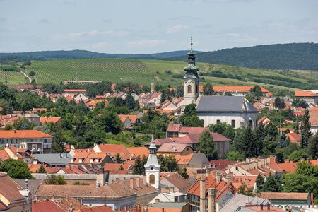 Aerial view Eger, Hungarian Country town with church and vineyards around the city Stockfoto