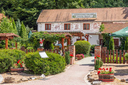 Eger , Hungary - July 08, 2019: Restaurant in the Valley of the beautiful Woman with many wine cellars