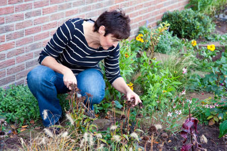 Woman is gardening in the front garden of her house