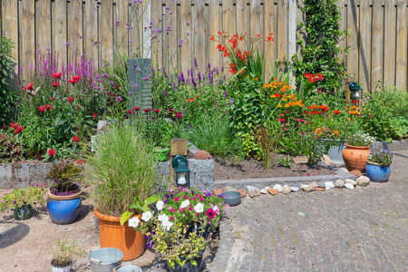 Ornamental garden with beautiful colorful plants in flowerbed and flowering pots