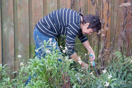 Woman gardening in backyard of her house 免版税图像