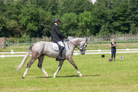 Urk, The Netherlands- July 07, 2012: Man with horse in dressage test at riding school of Urk, The Netherlands 新闻类图片