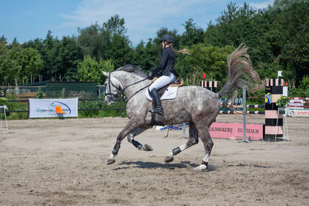 Urk, The Netherlands- July 07, 2012: Horse contest with female jockey at horse with waving horsetail