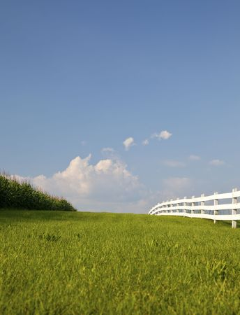 Cornfield with white fence separated by swath of green grass.  Bright blue sky with puffy white clouds.  Rural New Jersey.  Vertical.