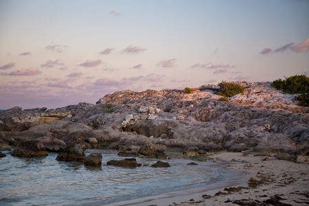 cozumel: Pink-hued beach in Cozumel, Mexico, at sunset
