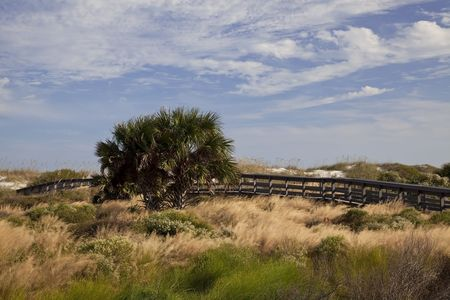 augustine: Wooden walkway over protected dunes in St. Augustine, Florida Stock Photo