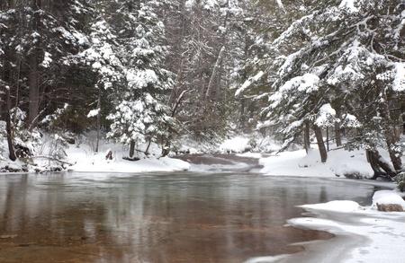 freshly fallen snow: Fondo oro e verdastro fiume mostrare attraverso acqua cristallina.  Neve fresca su alberi di pino nel montagne bianche del New Hampshire.  Orientamento orizzontale. Archivio Fotografico