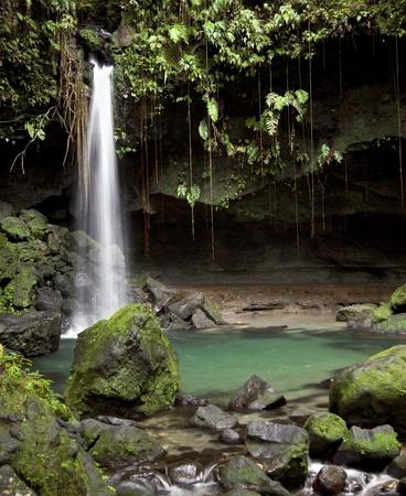Natuurlijke waterval en zwembad bekend als de Emerald Pool in het regenwoud van Dominica.