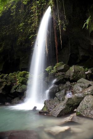 Waterval en zwembad bekend als de Emerald Pool in Dominica. View is van onder een grot overhang in plaats van het bekendere vooraanzicht.