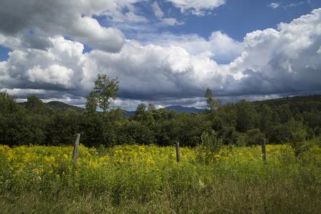 Veld in White Mountains van New Hampshire Stockfoto