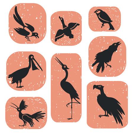 Cartoons set of several wild birds. Vector