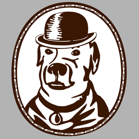 wearing: Vintage emblem. Dog wearing a hat.