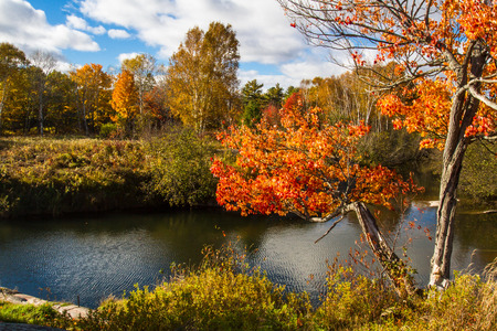 creek: Autumn trees, red rocks and Chikanishing Creek in Killarney Provincial Park, Ontario Canada