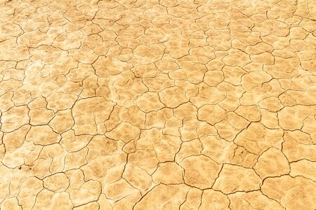 Desiccated soil. Cracked dry earth texture. Close up. Imagens