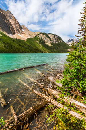 The Rocky Mountains. Dead, fallen trees grace the shore of a Sherbrook Lake. Yoho National Park, British Columbia, Canada Stock Photo