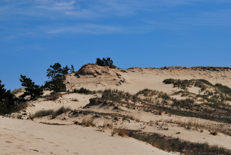 Sand dunes in the Polish national park