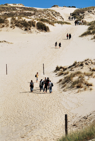 quicksand: Sand dunes in the Polish national park