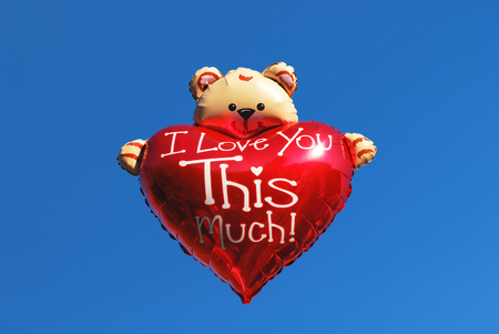 Teddy bear holding a heart - I love you this much photo