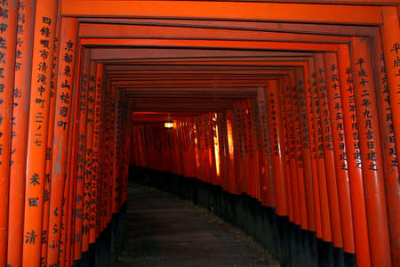 Fushimi Inari in Kyoto, Japan - Diverging paths of the Red gates (Torii) lining the path up the hill. The older gates are more faded in colour Stock Photo - 7298196