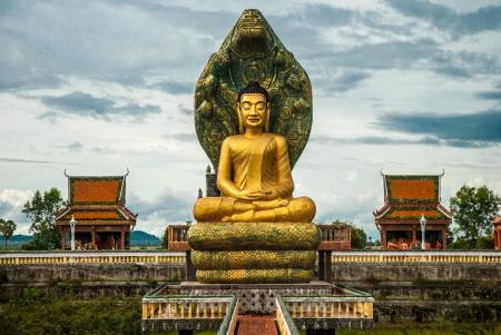 budda: Buddha statue in Cambodia
