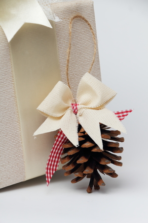 beautifully wrapped: Beautifully wrapped gift with a pine cone.
