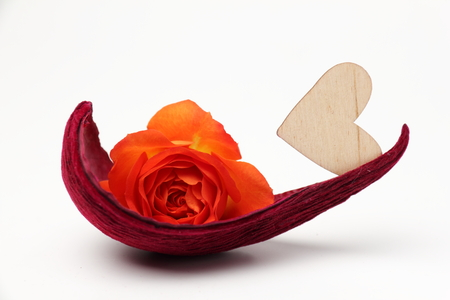 ship with gift: Heart and rose. Petal as a boat with a rose and a wooden heart on White background.