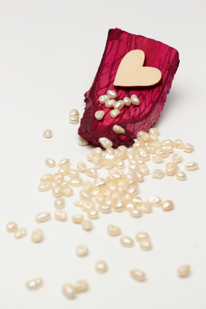Wooden heart on driftwood mahogany with pearls on white background. Stock Photo