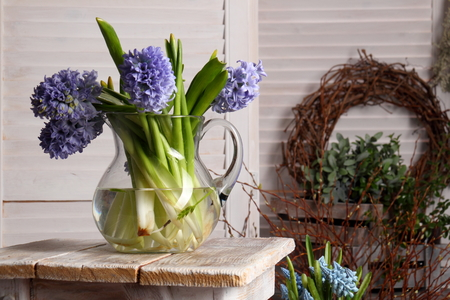 Spring flower in a glass jug.