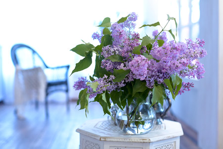 Bouquet of lilac in a glass vase. Interior with chair.