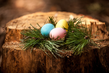 Shot of easter eggs lying on stump photo