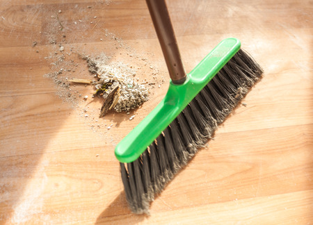 Image of brush cleaning garbage photo