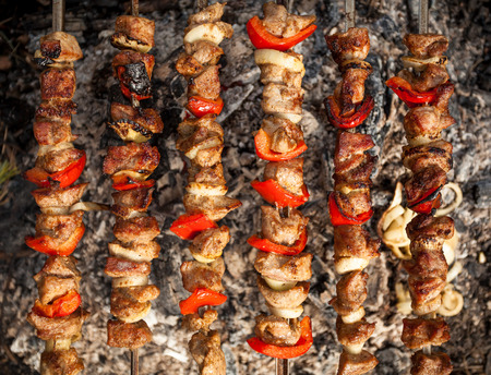 Photo of kebab being cooked on fire photo
