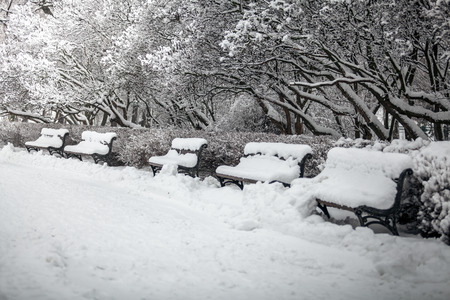 Outdoor shot of row of benches at park covered in snow photo