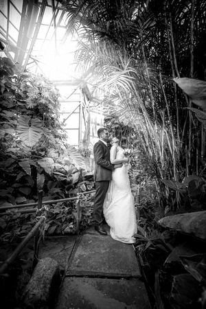 Black and white photo just married couple walking under bamboos at jungle photo