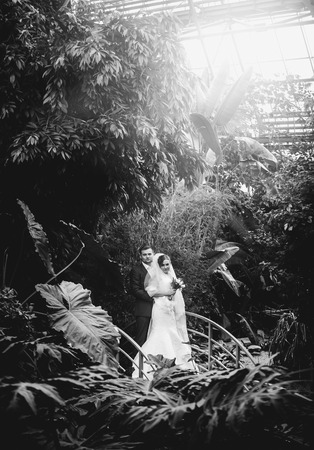 Black and white photo of newly married couple kissing at rain forest photo