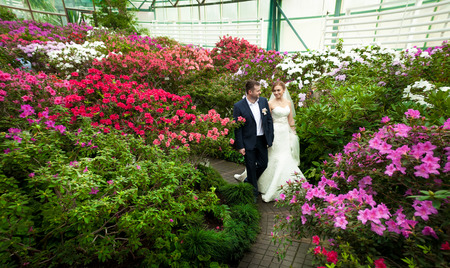 newly married couple: Beautiful newly married couple walking among trees covered in flowers Stock Photo