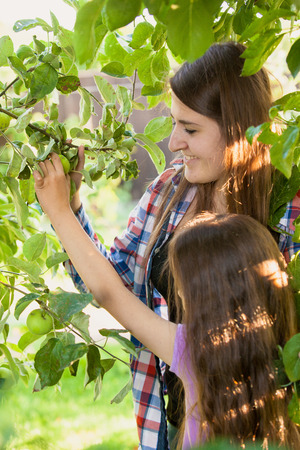 Portrait of smiling girl with mother picking green apple from tree photo