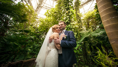 Closeup portrait of bride and groom hugging under palm at rain forest photo