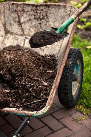 earthing: Closeup photo of spade putting soil in old wheelbarrow
