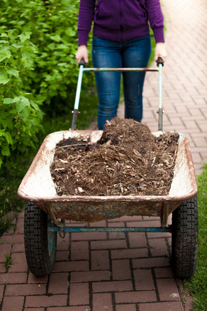 earthing: Closeup photo of woman holding wheelbarrow with soil