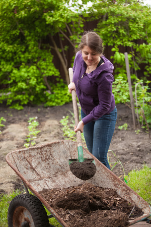 fertilizing: Photo of woman fertilizing garden bed with compost from wheelbarrow