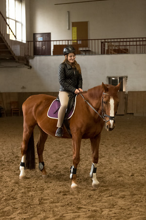 Beautiful young woman riding brown horse in indoor manege photo