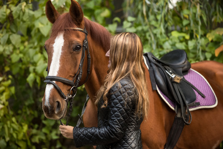rein: Closeup photo of beautiful woman holding horse by rein Stock Photo